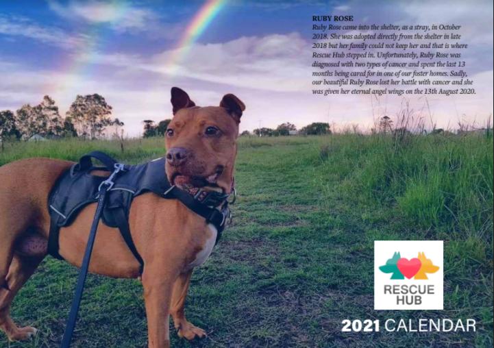 2021 Rescue Hub Calendar