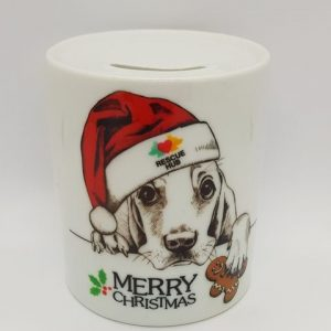 Rescue Hub Christmas Money Box